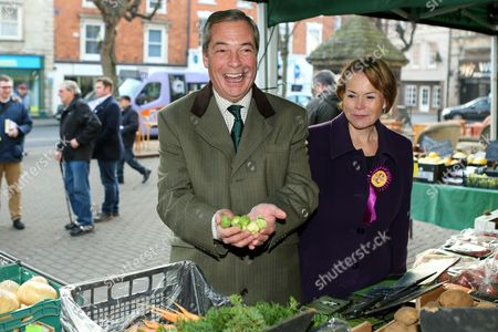 Editorial picture of Nigel Farage campaigning in Sleaford, Lincolnshire, UK - 05 Dec 2016