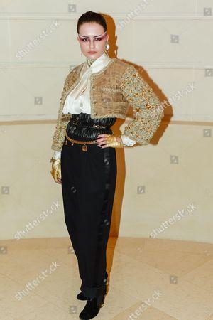 Editorial photo of Chanel Metiers d'Art Collection fashion show, Arrivals, Paris, France - 06 Dec 2016