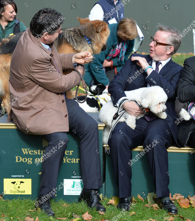 Westminster Dog of the Year Victoria Tower Gardens London This Years Winner and Rob Flello Mp with Diesel and Michael Gove Mp with Scarlet Who Came 2nd