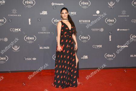 Editorial picture of Fenix Awards, Mexico City, Mexico - 07 Dec 2016