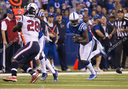 Stock Image of Indianapolis Colts linebacker Akeem Ayers (56) returns interception during NFL football game action between the Houston Texans and the Indianapolis Colts at Lucas Oil Stadium in Indianapolis, Indiana. Houston defeated Indianapolis 22-17