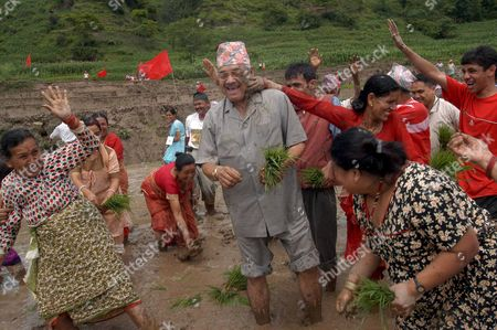 Local Farmers and School Students Splash Mud On Senior Cpn-uml Leader and Deputy Prime Minister Bamdev Gautam (c with Hat) During the Rice Plantation Festival at Bungmati Village Nepal On Thursday 29 June 2006 Hundreds of Farmers Political Leaders and School Students Participated in the Rice Plantation Festival at a Paddy Field Forty Percent of Nepal's Population Depends Upon Agriculture with Paddy the Major Crop of Nepal