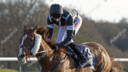 ALFREDO (George Baker) wins The Betway Stayers Handicap Lingfield