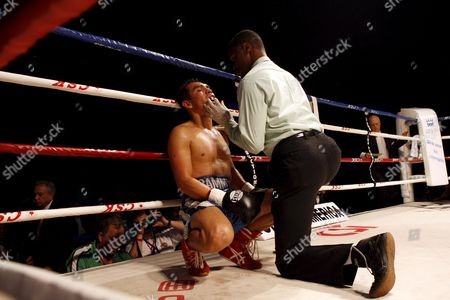 Samuel Ventura Alvarez (l) of Mexico Has His Mouthpiece Put in by a Referee After Being Knocked Down by Compatriot Marco Antonio Barrera (not Pictured) in Their Lightweight Bout of the 2008 Wbc World Championship Boxing in Chengdu Sichuan Province China 07 November 2008 Barrera Won the Bout