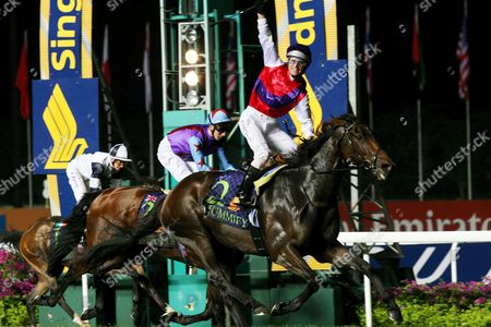 Stock Picture of Australian Jockey Danny Nikolic Raises His Hand in Jubilation On His Horse Mummify As They Cross the Finishing Line During the Singapore Airlines International Cup On Sunday 15 May 2005 Mummify From Australia Came in First During the Race Followed by Phonenix Reach From Great Britain and Epaolo From Germany the Winning Team Wins a Total of S$1 59million (760 711 Euros) in Prize Money