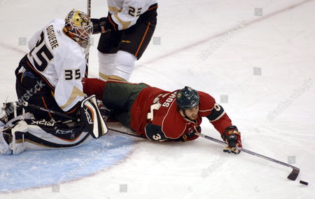 Minnesota Wild Aaron Voros (r) Tries to Sweep the Puck Into the Goal Past Anaheim Ducks' Jean-sebastien Giguere in the First Period at the Xcel Energy Center in St Paul Minnesota 30 January 2008
