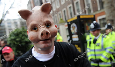 A Protestor Demonstrates Wearing a Pigs Mask Against Four Mp's Accused For Falsely Claiming Expenses Outside the Magistrates Court in London Britain 11 March 2010 Tory Mp Lord Hanningfield Appeared in Court For the First Time Accused of Falsely Claiming Expenses Also Three Labour Mps Scunthorpe Mp Elliott Morley Bury North Mp David Chaytor and Livingston Mp Jim Devine Were Charged After an Inquiry by Scotland Yard United Kingdom London