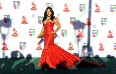 Editorial photo of Usa Latin Grammy Awards 2010 - Nov 2010