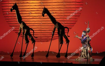 Stock Photo of Rafiiki Played by South African Gugwana Dlamini Performs During Media Preview of the Lion King in Singapore on 09 March 2011 the Lion King Stage Production Makes Its Debut in South East Asia at the Marina Bay Sands Integrated Resort on 10 March 2011 Singapore Singapore