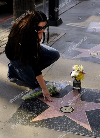 Jessica Gonzalez of Los Angeles Places Flowers Upon Then Touches the Star on the Hollywood Walk of Fame of Late Us Singer Etta James in Hollywood California Usa 20 January 2012 James Died at Age 73 of Complications From Leukemia in Riverside California on 20 January United States Hollywood