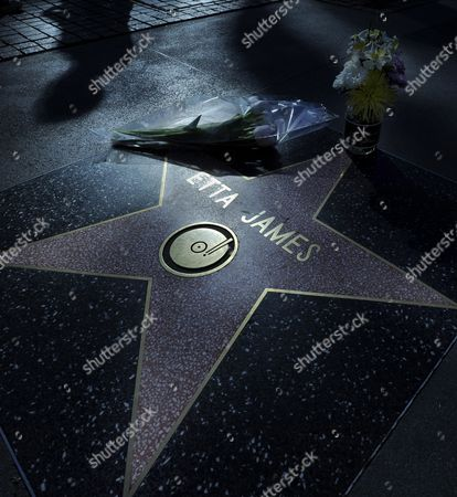 Flowers Are Placed on the Hollywood Walk of Fame Star of Late Us Singer Etta James in Hollywood California Usa 20 January 2012 James Died at Age 73 of Complications From Leukemia in Riverside California on 20 January United States Hollywood