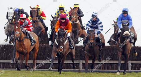 Stock Photo of SIR IVAN (centre, Noel Fehily) leads SOME ARE LUCKY (left) WELSH SHADOW (2nd right) AQUA DUDE (right) and eventual winner BELAMI DES PICTONS (rear group, yellow and blue, Liam Treadwell) Newbury