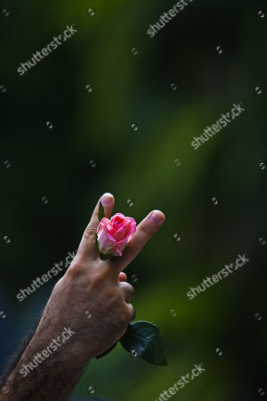 An Iranian Holding a Rose Flashes a V-sign During a Protest Outside the United Nations Office in Kuala Lumpur Malaysia 2 March 2011 About 50 Iranians Gathered Outside the United Nations Office to Condemn the Arrest of Opposition Leaders Mirhossein Mousavi and Mehdi Karroubi by Iranian Authorities Malaysia Kuala Lumpur