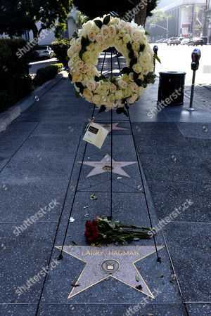 Flowers Are Placed by the Star of Us Actor Larry Hagman on the Hollywood Walk of Fame in Hollywood California Usa 25 November 2012 Us Actor Larry Hagman Died in Dallas Texas 23 November 2012 Hagman was Known For His His Roles in 'I Dream of Jeannie' and 'Dallas' United States Hollywood