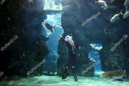 Editorial image of Monaco Museum Santa Claus - Dec 2012