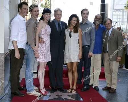The Cast of 'Ncis' (l-r) Us Actor Michael Weatherly Us Actor Brian Dietzen Us Actress Pauley Perrette Us Actor Mark Harmon Chilean Actress Cote De Pablo Us Actor Sean Murray Us Actor Rocky Carroll and Scottish Actor David Mccallum Pose with Harmon's Star on the Hollywood Walk of Fame During Ceremony in Hollywood California Usa 01 October 2012 Harmon was Awarded the 2 482nd Star on the Hollywood Walk of Fame in Category of Television United States Hollywood