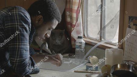 Editorial photo of 'The Alchemist Cookbook' Film - 2016