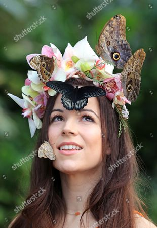 Model Jessie May Smart pictured wearing a floral headpiece of tropical flowers designed by young florist Emma Reynolds to mark the opening of Butterflies in the Glasshouse at RHS Garden Wisley today.ne. The plant life in the glasshouse includes shimmering bromeliads, dangling Heliconias, flamboyant red Anthuriums and cascading orchids. The array of food plants for the butterflies includes Calliandra, Lantana with their dainty clustered flowers, Justicia, Pavonia and Pachystachys.