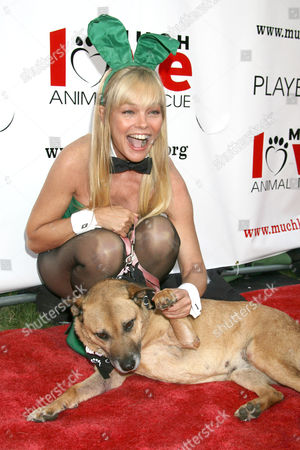 Editorial picture of Much Love Animal Rescue Presents the 2nd Annual 'Bow Wow Wow!' Celebrity Fundraiser at the Playboy Mansion, Los Angeles, America - 19 Jul 2008