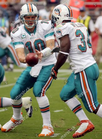 Miami Dolphins Runningback Rickie Williams (r) Takes the Handoff From Quarterback Chad Pennington During the Third Quarter of Their Nfl Game Against the Arizona Cardinals in Glendale Arizona Usa 14 September 2008