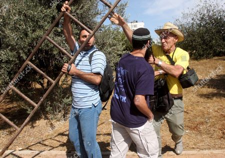 Stock Photo of Israeli Jewish Settlers (l and C) Scuffle with an Israeli Peace Activist During a Harvest of Olives Near the Kyriat Arba Jewish Settlement in the West Bank City of Hebron 03 October 2008 Israeli Settlers Clashed On 03 October at an Olive Grove Near Hebron with Activists Protesting the Israeli Occupation of the West Bank Police Said According to Settlers the Fracas Broke out When One of the Activists Pushed the Wife of Settler Leader Itamar Ben-gvir the Activists However Said the Settlers Attacked Them First One Anti-occupation Activist Was Detained by Police a Police Spokesman Chief Inspector Mickey Rosenfeld Said