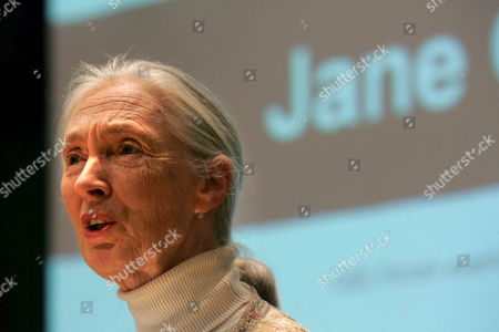 Jane Goodall Un Messenger of Peace Dame of the British Empire and World Renowned Chimpanzee Researcher Talks to Delegates About Her Newest Book 'Harvest For Hope' in Johannesburg Tuesday 28 March 2006