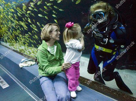 Editorial picture of Usa Georgia Aquarium - Nov 2005