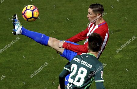 Atletico Madrid's striker Fernando Torres (R) fights for the ball with defender Jose Carlos Ramirez (front) of Real Betis during their Primera Division soccer match played at Vicente Calderon stadium in Madrid, Spain on 14 January 2017.