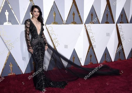 Jane Wu Arrives For the 88th Annual Academy Awards Ceremony at the Dolby Theatre in Hollywood California Usa 28 February 2016 the Oscars Are Presented For Outstanding Individual Or Collective Efforts in 24 Categories in Filmmaking United States Hollywood