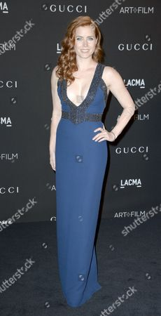 Us Actress Amy Adams Arrives For the 2014 Lacma Art + Film Gala at the Los Angeles County Museum of Art (lacma) in Los Angeles California Usa 01 November 2014 the Event Honored Us Artist Barbara Kruger and Us Director Quentin Tarantino United States Los Angeles
