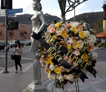 Flowers Are Placed at the Gateway to Hollywood Which Celebrates Women's Contribution in Movies For Us Actress and Diplomat Shirley Temple Black on the Hollywood Walk of Fame in Hollywood California Usa 11 February 2014 the Famous Child Actress Died in San Francisco on 10 February 2014 at the Age of 85 United States Hollywood