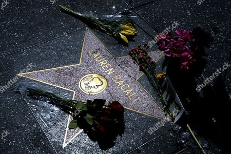 Flowers and Other Mementos Are Placed on the Hollywood Walk of Fame Star For Us Actress Lauren Bacall in Hollywood California Usa 13 August 2014 the Actress who was Married to the Late Humphrey Bogart and was Honored with an Oscar 'In Recognition For Her Central Place in the Golden Age of Movie Making' Died of a Stroke 12 August 2014 in New York at the Age of 89 United States Hollywood