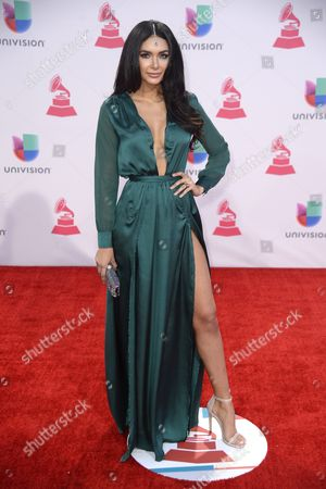 Stock Photo of Jamillette Gaxiola Arrives at the 16th Annual Latin Grammy Awards at the Mgm Grand in Las Vegas Nevada Usa 19 November 2015 Latin Grammy Awards Recognize Artistic And/or Technical Achievement not Sales Figures Or Chart Positions and the Winners Are Determined by the Votes of Their Peers-the Qualified Voting Members of the Academy United States Las Vegas