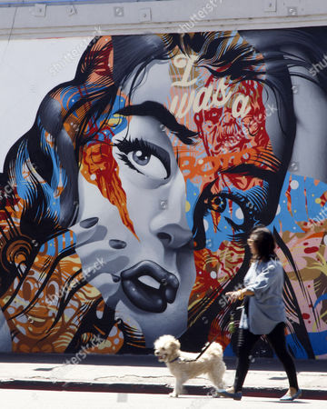 A Woman Walks Her Dog Past the Mural 'I was a Botox Junkie' by Artist Tristan Eaton in the Revived Street Art Scene of Los Angeles California Usa 08 April 2015 the City Has Recently Seen a Dramatic Increase in Murals After a Decade-long Moratorium was Lifted United States Los Angeles