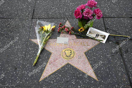 Flowers and Other Mememtos Are Placed on the Hollywood Walk of Fame Star For Us Actress Lauren Bacall in Hollywood California Usa 13 August 2014 the Actress who was Married to the Late Humphrey Bogart and was Honored with an Oscar 'In Recognition For Her Central Place in the Golden Age of Movie Making' Died of a Stroke 12 August 2014 in New York at the Age of 89 United States Hollywood