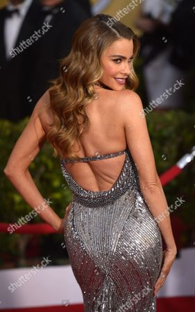 Colombian Actress Sophia Vergara Arrives For the 20th Annual Screen Actors Guild Awards at the Shrine Auditorium in Los Angeles California Usa 18 January 2014 Epa/paul Buck United States Los Angeles