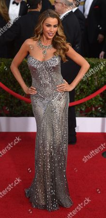 Colombian Actress Sophia Vergara Arrives For the 20th Annual Screen Actors Guild Awards at the Shrine Auditorium in Los Angeles California Usa 18 January 2014 United States Los Angeles