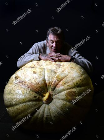 Brian Marshall of Nottingham Poses with His First Placed Pumpkin Weighing 230 Kilo in the Giant Vegetable Section at the Harrogate Autumn Flower Show in Harrogate Britain 18 September 2015 the Flower Show in Its 40th Year is Expected to Attract Around 40 000 Visitors From 18 to 20 September United Kingdom Harrogate