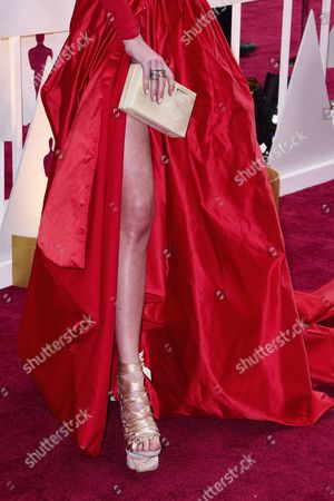 Dorith Mous Arrives For the 87th Annual Academy Awards Ceremony at the Dolby Theatre in Hollywood California Usa 22 February 2015 the Oscars Are Presented For Outstanding Individual Or Collective Efforts in 24 Categories in Filmmaking United States Los Angeles