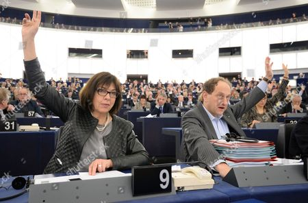 Rebecca Harms of the European Parliament For Alliance 90/the Greens and Alexander Graf Lambsdorff From Germany of the Group of the Alliance of Liberals and Democrats For Europe Vote During the Plenary Session at the European Parliament in Strasbourg France 26 February 2014 the European Parliament Voted on the Manufacture Presentation and Sale of Tobacco and Related Products France Strasbourg