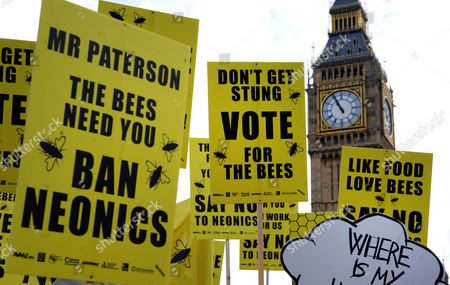 Beekeepers Protest Outside Parliament During a Demonstration in London Britain 26 April 2013 Over 100 Beekeepers Together with Designers Dame Vivienne Westwood and Katharine Hamnett Protested Urging Secretary of State For Environment Owen Paterson to not Block the Eu Proposal to Suspend the Use of Bee Killing Pesticides the Demonstration Came Ahead of a Vote in Brussels Which Will Decide Whether Europe Agrees to Introduce a 2 Year Moratorium on the Use of Certain Types of Nenicotinoid Pesticides United Kingdom London
