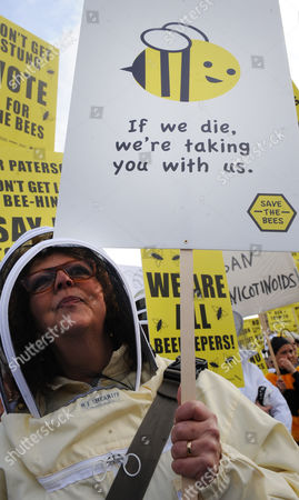 Beekeepers March on Parliament During a Demonstration in London Britain 26 April 2013 Over 100 Beekeepers Together with Designers Dame Vivienne Westwood and Katharine Hamnett Protested Urging Secretary of State For Environment Food and Rural Affairs Owen Paterson to not Block the Eu Proposal to Suspend the Use of Bee Killing Pesticides the Demonstration Came Ahead of a Vote in Brussels Which Will Decide Whether Europe Agrees to Introduce a 2 Year Moratorium on the Use of Certain Types of Nenicotinoid Pesticides United Kingdom London