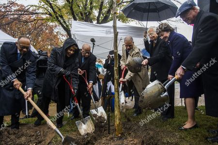 Stock Photo of (l-r) Washington Post Columnist Eugene Robinson; Author of the Play 'Anne and Emmett ' Janet Langhart Cohen; Democratic Congressman From Georgia John Lewis; Us Attorney General Eric Holder; Republican Senator From Mississippi Thad Cochran; Republican Senator From Maine Susan Collins; and Republican Senator From Mississippi Roger Wicker Attend a Tree-planting Ceremony to Honor Emmett Till an African American Boy who was Tortured and Murdered by White Men in Mississippi in 1955 Outside the Us Capitol in Washington Dc Usa 17 November 2014 Republican Senator From Maine Susan Collins Sponsored the Planting Saying Till's Brutal Killing 'Led to Important Civil Rights Reforms in Our Nation ' United States Washington