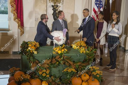Us President Barack Obama (3-r) Pardons the National Thanksgiving Turkey Named 'Cheese' (c) Beside His Daughters Sasha (2-r) and Malia (r) and National Turkey Federation Chairman Gary Cooper (2-l) of Ft Recovery Ohio and His Son Cole Cooper (l) in the Grand Foyer of the White House in Washington Dc Usa 26 November 2014 This Year's Turkey 'Cheese' and Alternate 'Mac' Both About 48 Pounds (21 7 Kilograms) Were Raised in Ohio and Will Travel to Their Permanent Home at Morven Park's 'Turkey Hill' - a Historic Turkey Farm in Leesburg Virginia United States Washington