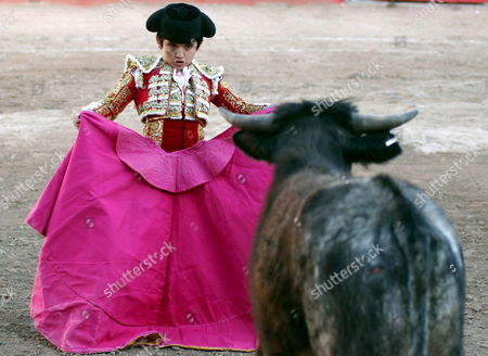Mexican Rafita Mirabal 'The Wonder Boy' (9) Fights 'Torito' a Young Bull From the Guadalupana Ranch in San Miguel De Allende Mexcio on Saturday 15 April 2006 the Boy Cut the Two Ears and was Cheered by the Audience Mexico San Miguel De Allende