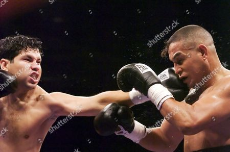 Stock Photo of Boxer Hector Camacho Jr Tags Fransico Benny Barra in the 3rd Round of Thier Fight Saturday 9 July 2005 at the Tucson Convention Center Hector was Fighting on the Undercard of His Father's Main Event Fight This is Only the Second Time a Father and Son Have Fought on the Same Card Hector Jr Won His Fight Over Barra of Mexico with a Ko in the 4th Round United States Tucson