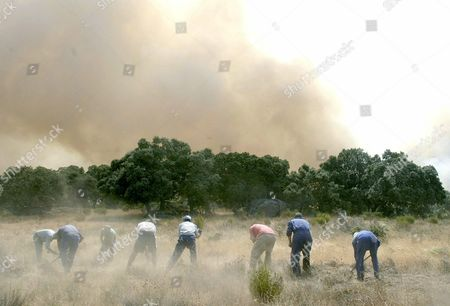 Volunteers Battle on Monday 04 August 2003 the Flames of a Forest Fire That Started Late Sunday in the Province of Avila 130 Kilometres West of Madrid the Fires Have Reached a Width of 20 Kilometres and Destroyed 5 000 Hectares of Forest and Bushes More Than 100 People Have Been Forced to Leave Their Homes and the Authorities of the Area Fear the Fire Could Reach the Salamanca Province Northwest Spain Epa Photo/efe/david Castro Barreiro Spain Avila