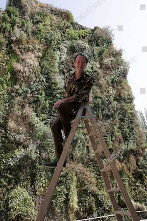 French Designer Patrick Blanc Poses on a Ladder in Front of the So Called Vertical Garden Over the Walls of the Caixaforum Building in Madrid 13 July 2007 the Vertical Garden is a 460 Square Meters Vegetal Wall That Relies on a New Way to Grow Plants Without Any Soil It is the First Time It is Installed in Spain After Previous Experiences in Paris Osaka and New Delhi Spain Madrid