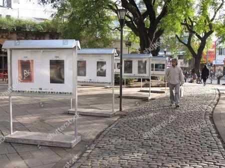 Editorial picture of Argentina Sabato - Jun 2011