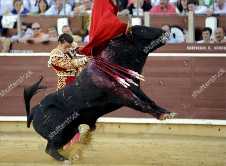 Stock Photo of Spanish Bullfighter Andres Palacios Performs During a Bullfight on the Occasion of the Albacete's Fair in Albacete Central Spain 13 September 2008 Spain Albacete
